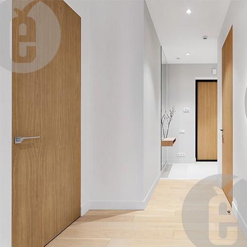 невидимая межкомнатная дверь со скрытым коробом