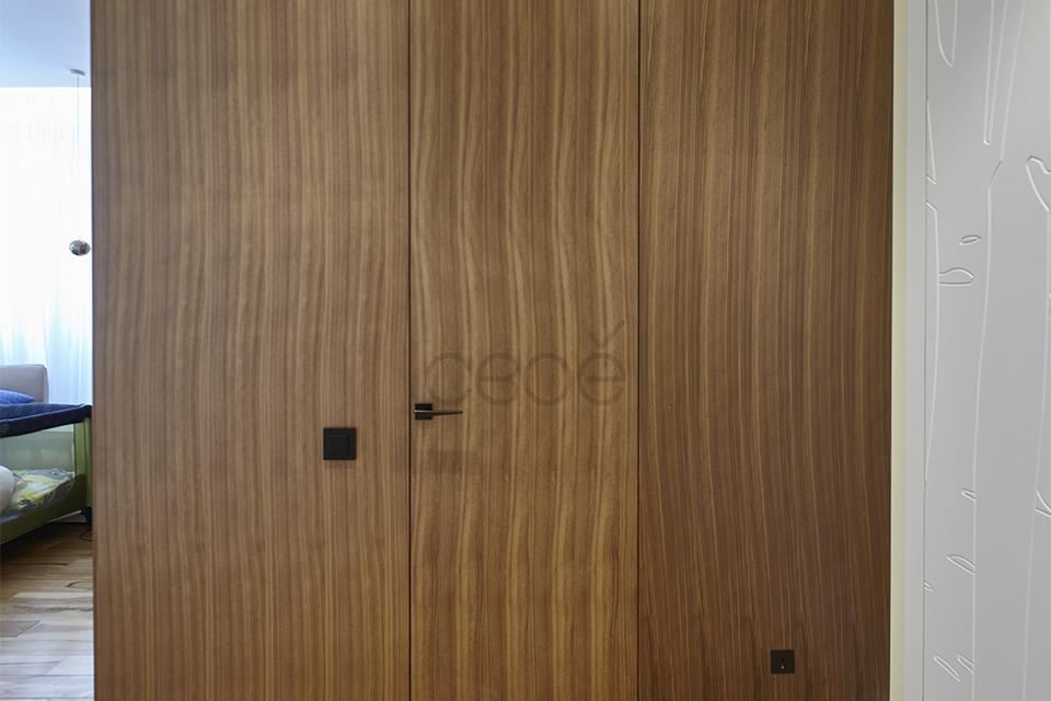 Дверь-невидимка в шпоне
